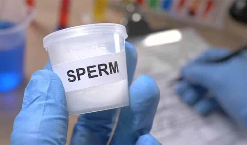 услуги спермодонора